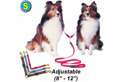 S Double Dog Lead
