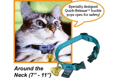 Safety Cat Collar w/Bell