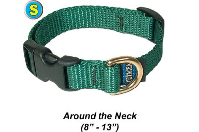 "Small Dog Collar 8"" - 13"""