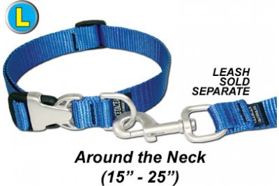 Large Dog Collar w/Satin HW