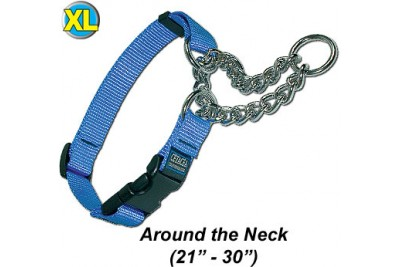 XL Chain Martingale Dog Collar