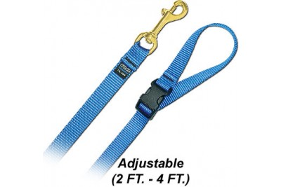 4 FT. M Leash