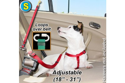 S Seatbelt Tether