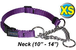 XS Chain Martingale Dog Collar