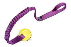 Tennis Ball Toy Sling