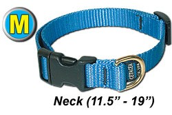 "Medium Dog Collar 11.5"" - 19"""