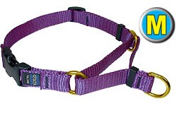 Medium Soft Martingale Dog Collar