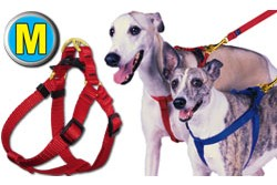 Medium Step-In Pet / Dog Harness