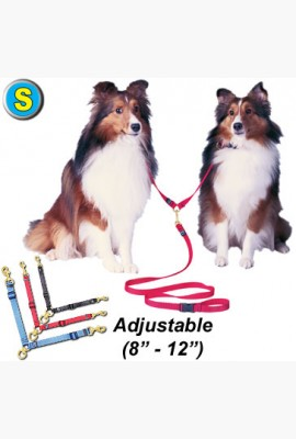 S Swivel Double Dog Lead