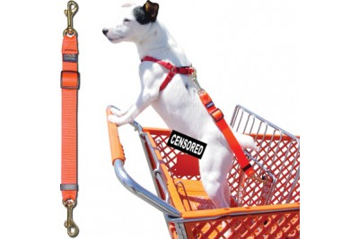 Shopping Cart Tether