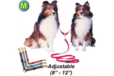 M Double Dog Lead
