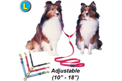 L Swivel Double Dog Lead