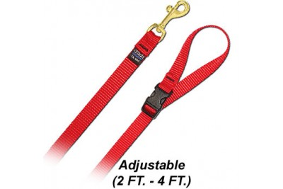4 FT. S Leash