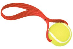 Tennis Ball Toy