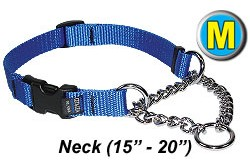 Medium Chain Martingale Dog Collar