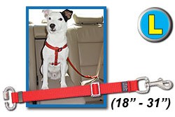 L Stainless Seatbelt Tether